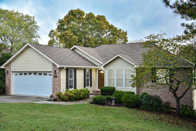 Loudon Single Family Home For Sale: 698 Lakeview Drive