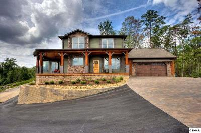 Sevierville Single Family Home For Sale: 3265 Laurel Cove Tr