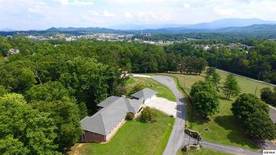 Pigeon Forge Single Family Home For Sale: 1317 Americana Drive
