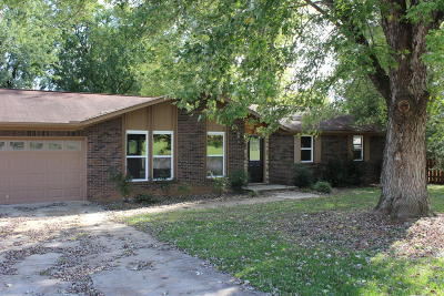 Blount County, Knox County Single Family Home For Sale: 4704 Zirkle Drive
