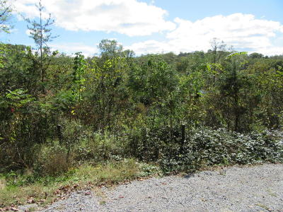 Anderson County Residential Lots & Land For Sale: Lovely Bluff Rd