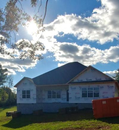 Maryville Single Family Home For Sale: 2054 Angus Blvd