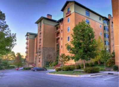 Sevier County Condo/Townhouse For Sale: 212 Dollywood Lane #117