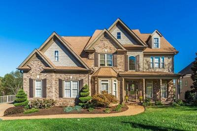 Knoxville Single Family Home For Sale: 9024 Legends Lake Lane