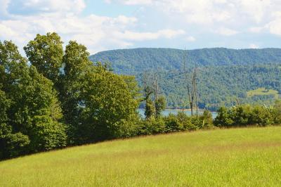 New Tazewell TN Residential Lots & Land For Sale: $49,900