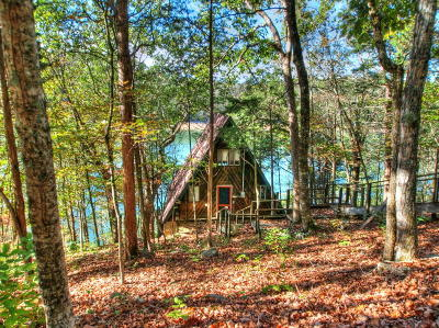 Campbell County Single Family Home For Sale: 375 Hueston Wood Lane