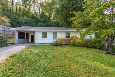 Knoxville Single Family Home For Sale: 2300 SE Sylvania Ave