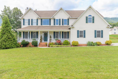 Campbell County Single Family Home For Sale: 149 Chelsea Lane