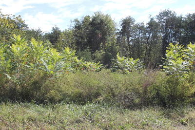 Union County Residential Lots & Land For Sale: 119 Norris Shores Drive