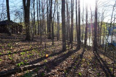 Anderson County, Campbell County, Claiborne County, Grainger County, Hancock County, Hawkins County, Jefferson County, Union County Residential Lots & Land For Sale: Deer Run Circle