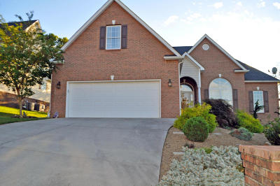 Knoxville Single Family Home For Sale: 2143 Elm Grove Lane