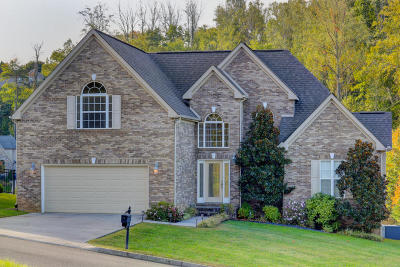 Knoxville Single Family Home For Sale: 1919 Cascade Falls Lane