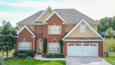 Knoxville Single Family Home For Sale: 10246 Autumn Valley Lane