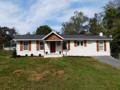 Anderson County Single Family Home For Sale: 587 Offutt Rd