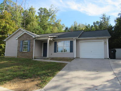 Knoxville Single Family Home For Sale: 2406 Woods Smith Rd