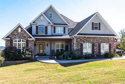 Knoxville Single Family Home For Sale: 3820 Elizabeth Downs Lane