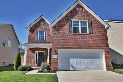 Knoxville Single Family Home For Sale: 1925 Piperton Lane