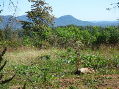 Union County Residential Lots & Land For Sale: 147 Hill Top Lane
