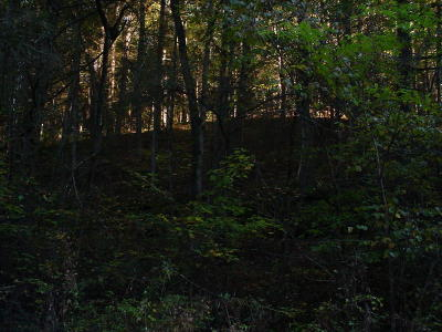 Anderson County, Campbell County, Claiborne County, Grainger County, Hancock County, Hawkins County, Jefferson County, Union County Residential Lots & Land For Sale: Melvin Hollow Road