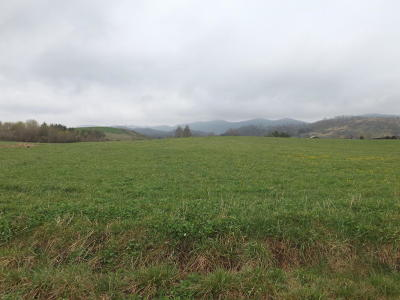 Anderson County, Campbell County, Claiborne County, Grainger County, Hancock County, Hawkins County, Jefferson County, Union County Residential Lots & Land For Sale: Skylark Lane