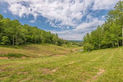 Union County Residential Lots & Land For Sale: 105 Raccoon Valley Rd