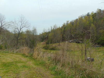 Anderson County, Campbell County, Claiborne County, Grainger County, Hancock County, Hawkins County, Jefferson County, Union County Residential Lots & Land For Sale: 172 Muriel Lane
