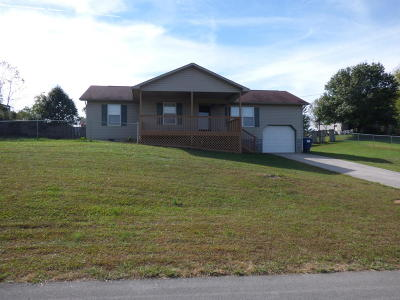 Anderson County, Campbell County, Claiborne County, Grainger County, Union County Single Family Home For Sale: 156 Megan Lane