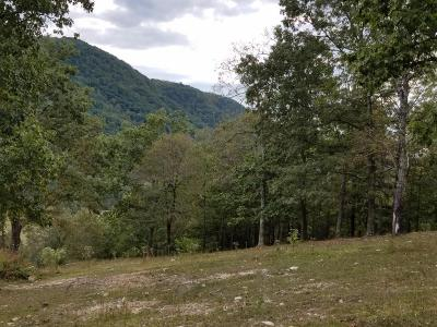 Anderson County, Campbell County, Claiborne County, Grainger County, Hancock County, Hawkins County, Jefferson County, Union County Residential Lots & Land For Sale: 98.5acres Vardy Blackwater Rd