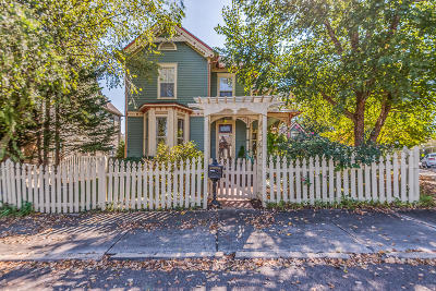 Knoxville Single Family Home For Sale: 1110 Oak Ave