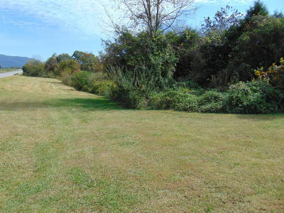 Residential Lots & Land For Sale: General Carl W Stiner Hwy.