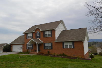 Seymour Single Family Home For Sale: 349 Meadowlake Circle