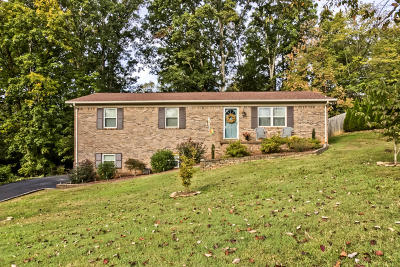 Knoxville Single Family Home For Sale: 1127 Burning Tree Lane