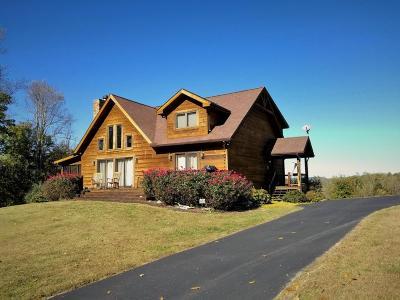 Single Family Home For Sale: 342 Tanzanite Tr