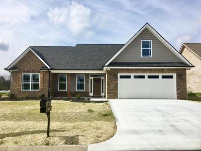 Knoxville Single Family Home For Sale: 6317 Knightsboro Rd