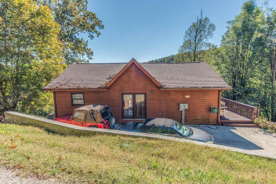 Lafollette Single Family Home For Sale: 194 Gizmo Lane