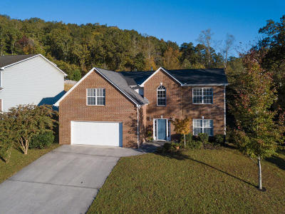 Knoxville Single Family Home For Sale: 8613 Abraham Lane