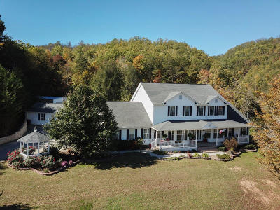 Sevierville Single Family Home For Sale: 1650 Little Cove Rd