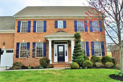 Knoxville Single Family Home For Sale: 1168 Gray Eagle Lane