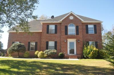 Knoxville Single Family Home For Sale: 6729 Cardindale Drive