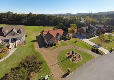Knoxville Single Family Home For Sale: 7324 Emory Pointe Lane
