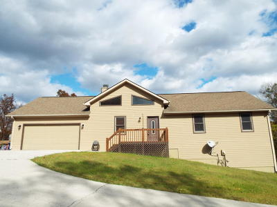 Lafollette Single Family Home For Sale: 203 Camp Galilee Rd