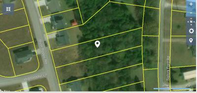 Mascot Residential Lots & Land For Sale: 1828 River Poppy Drive