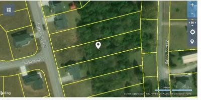 Mascot Residential Lots & Land For Sale: 1824 River Poppy Drive