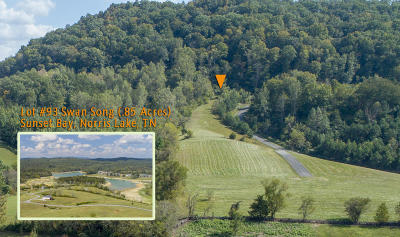 Residential Lots & Land For Sale: Lot 93 Swan Song Tr