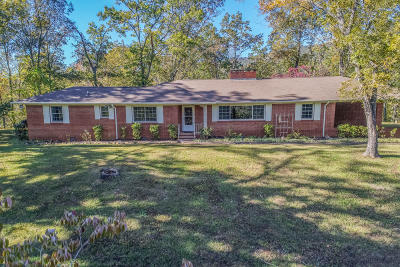 Single Family Home For Sale: 134 Magna Vista Drive