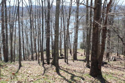 Mooresburg Residential Lots & Land For Sale: 1012 Wilderness Drive