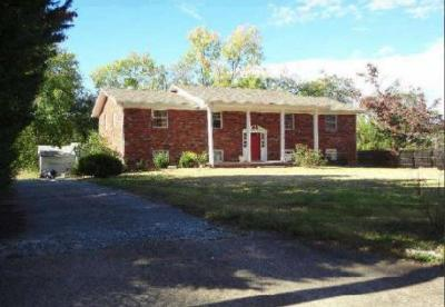 Anderson County Single Family Home For Sale: 407 Douglas Lane
