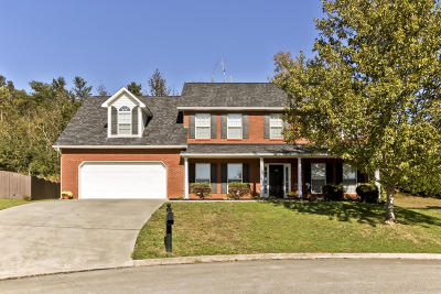 Knoxville Single Family Home For Sale: 705 Dawson Creek Lane