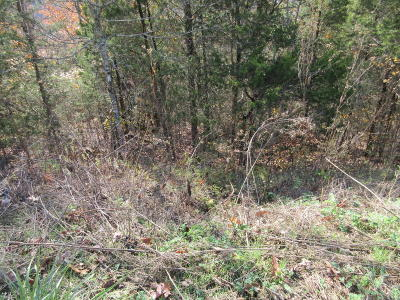 Claiborne County Residential Lots & Land For Sale: Cove Court