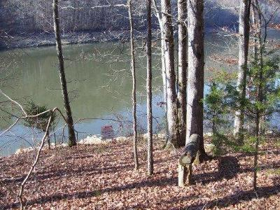 Residential Lots & Land For Sale: Proffitt Hollow